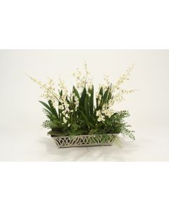 Orchids, Fern in Silver Planter