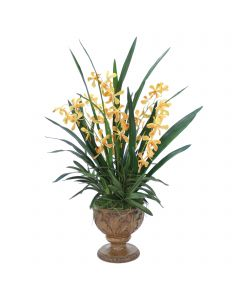 Gold Yellow Vanda Orchid Plant in Acanthus Leaf Urn