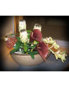 Proteas and Calla Lilies in Oval Ceramic Planter