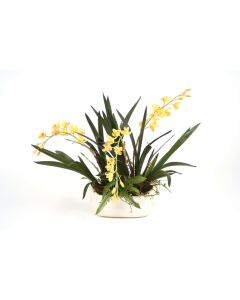 Gold Yellow Orchids withFern andpods in Ivory Oval Planter