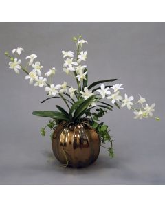 Caesar Orchid and Foliage with Succulent in Gold Ball Vase