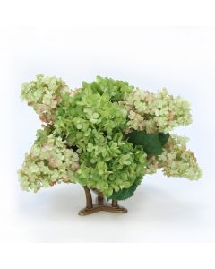 Hydrangea Mix in Glass Bowl with Tusk Base