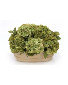 Green & Green Brown Hydrangeas in Ceramic Oval Planter