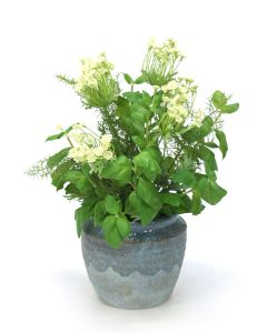 Basil and Safari Pine with Queen Anne Lace in Blue Earthy Pot