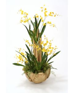 Orchids, Succulents, Fern in Wood Leaf Bowl