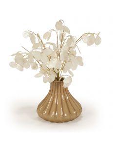 Money Plant in Beige Earthenware Vase