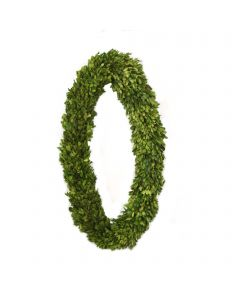 """28"""" Preserved Boxwood Oval Wreath"""