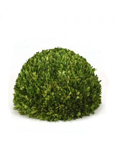 "19"" Round Boxwood 3/4 Ball Shape with Flat Bottom"