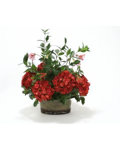 Dark Red Hydrangeas, Foliage in Oval Glass Vase