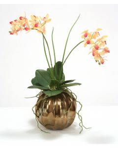 Rose Pink Cream Mini Orchid in Burnt Gold Ball Vase