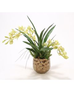 Green Cymbidium Orchids in Burnt Gold Gabbi Planter