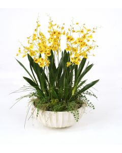 Gold-Yellow Dancing Orchids with Grass in Large Fluted Bowl