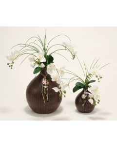 White Orchids in Brown Vigan Vase (Set of 2, 1 Large and 1 Small)