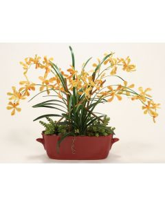 Orange Yellow Vanda Orchids with Orchid Folaige in Red Oval Planter