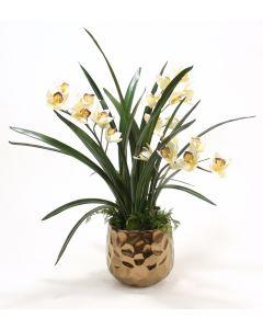 Cream Burgundy Orchid in Burnt Gold Gabbi Pot