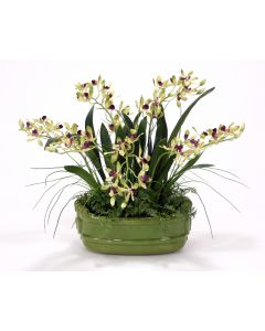 Green Vanda Orchids with Ferns in A Green Glazed Planter