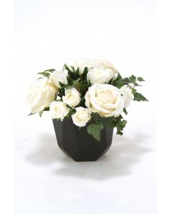White Rose Buds in Black Benito Pot