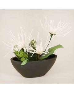 White Fugi Mums in Black Oval Planter