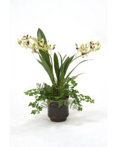 Vanda Orchid in Dark Bronze Pot