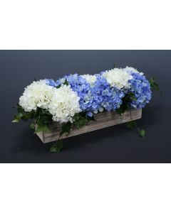 Blue And White Hydrangeas in White Washed Box