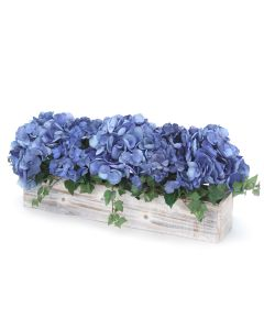 Blue Hydrangea's in White Washed Box