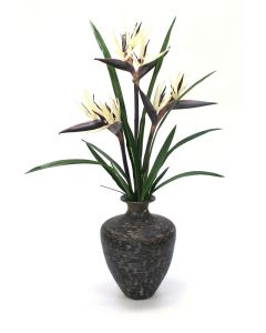 Birds of Paradise in Vase