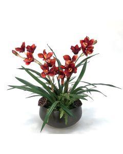 Rust Cymbidium Orchids in Sosa Bowl