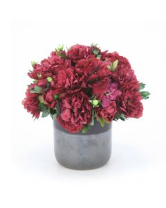 Burgundy Peonies in Two Toned Black Pot