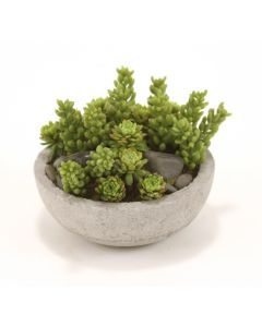 Mixed Succulents and Stones in Concrete-Lite Bowl (Sold in Multiples of 4)