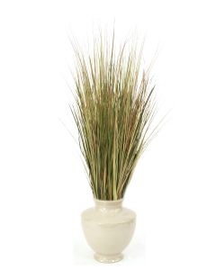 Mixed Grasses In Shellish Sand Glazed Planter