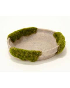 Md Mossed Saucer Moss Gray (Sold in Multiples of 2)