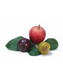 Apple, Pear and Plum Pick with Leaves