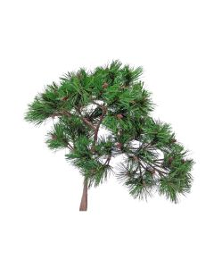 "19"" Needle Pine Bonsai"