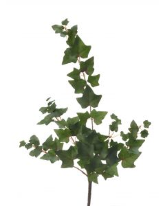 Mini Mountain Ivy Vine Olive Green (Sold in Multiples of 24)