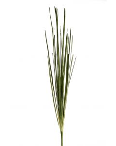 """40.5"""" Thin Mondo Grass Bush in Green (Sold in Multiples of 6)"""