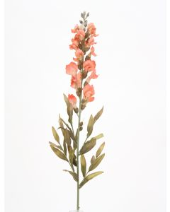 Small Peach Snapdragon Stem