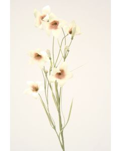 Wild Campanula in Ivory (Sold in Multiples of 12)