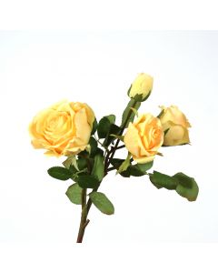 "15"" Rose in Light Yellow (Sold in Multiples of 12)"