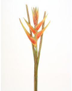 "43.5""Heliconia Stem Dark Orange"