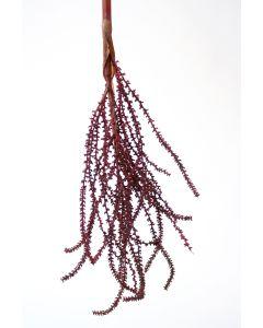 "32"" Small Palm Seed Spray in Dark Burgundy"