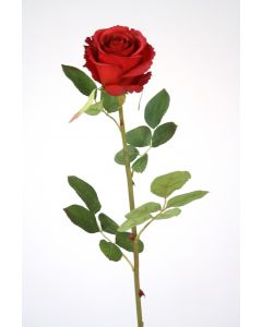 "28.5"" Natural Rose Stem in Red (Sold in Multiples of 12)"