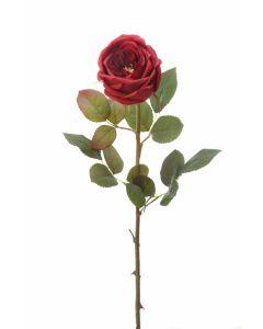 Med Single Closed Cabbage Rose Dark Red