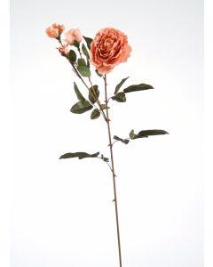Large Nun Rose Spray in Peach