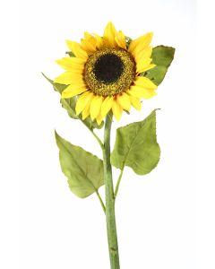 Medium Sunflower in Gold