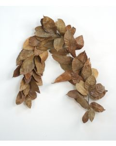 Magnolia Leaves Garland in Natural (Sold in Multiples of 6)