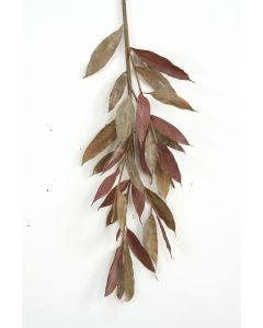 Small Myrtle Branch Natural Brown
