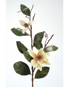 Small Magnolia Branch White Blush (Sold in Multiples of 6)