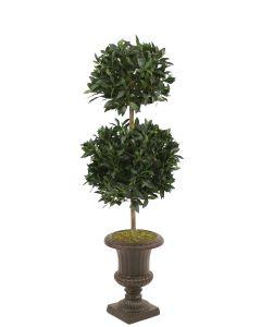 5' Sweet Bay Laurel Double Topiary in Rust Classic Urn