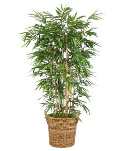 8' Bamboo Tree in Natural Round Core Arrorog Rattan Basket with Handles