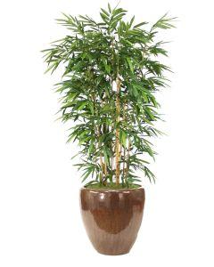 8' Bamboo Tree in Glazed Mocha Stoneware Planter